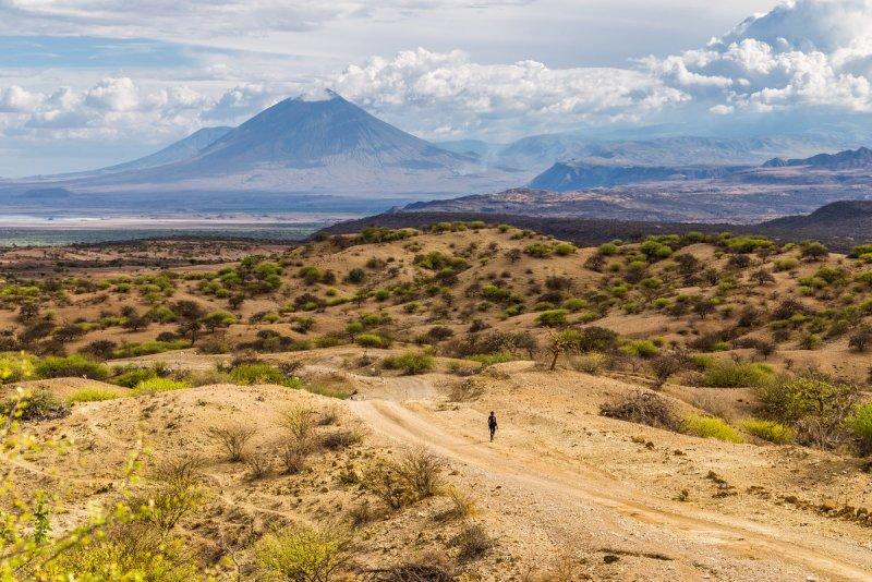 Путешествие по национальным паркам Танзании. Автор фото: Сергей Андрейчук