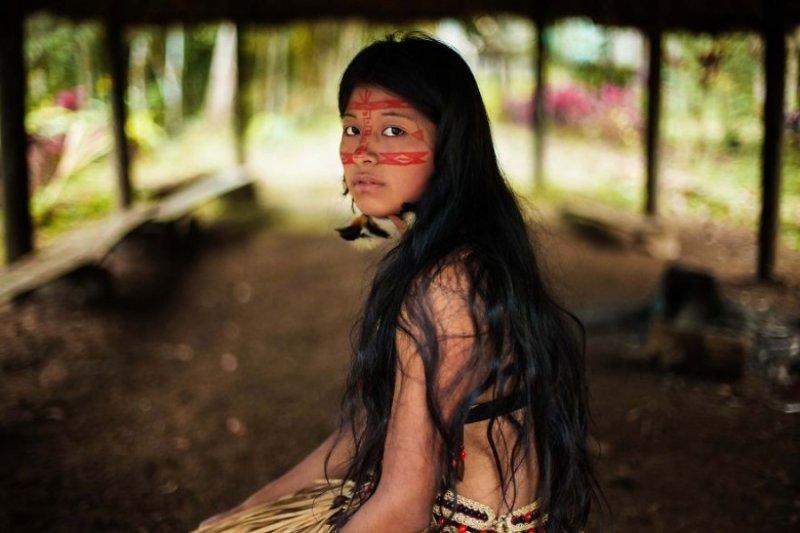 Джунгли Амазонии