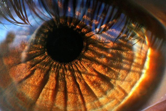 Как удивительно фотографировать глаза?