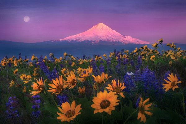 Великолепие пейзажной съемки в творчестве Марка Адамуса - №6