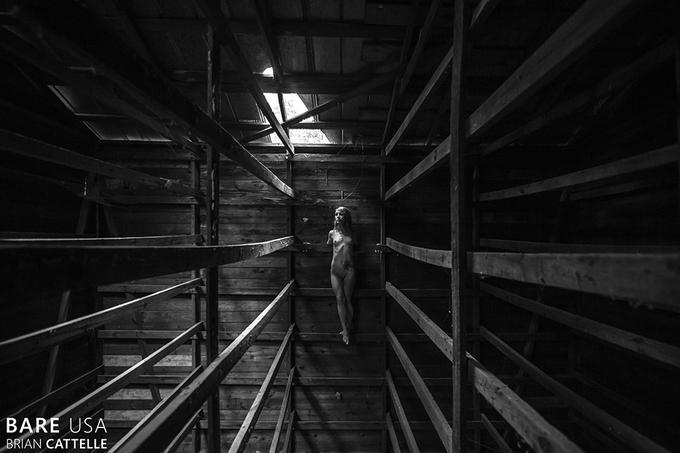 Bare USA: модели в заброшенных местах - №28