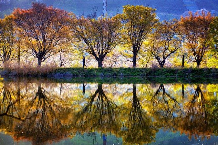 Зеркальные пейзажи Чже Вун Ю - №6