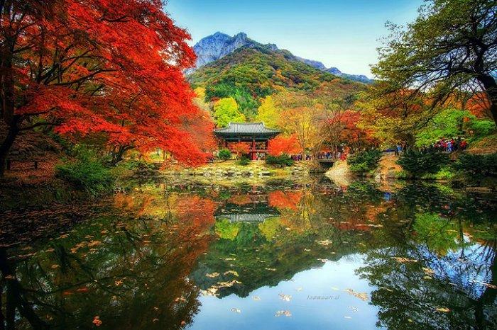 Зеркальные пейзажи Чже Вун Ю - №10