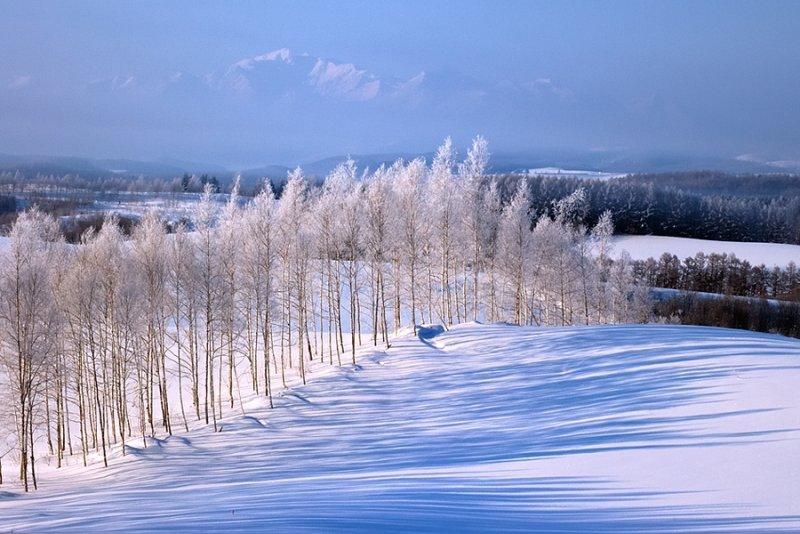Ландшафтная сказка в фотографиях Кента Шираиши - №16