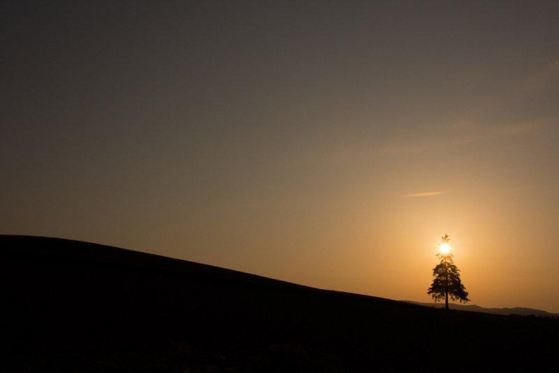 Ландшафтная сказка в фотографиях Кента Шираиши - №12