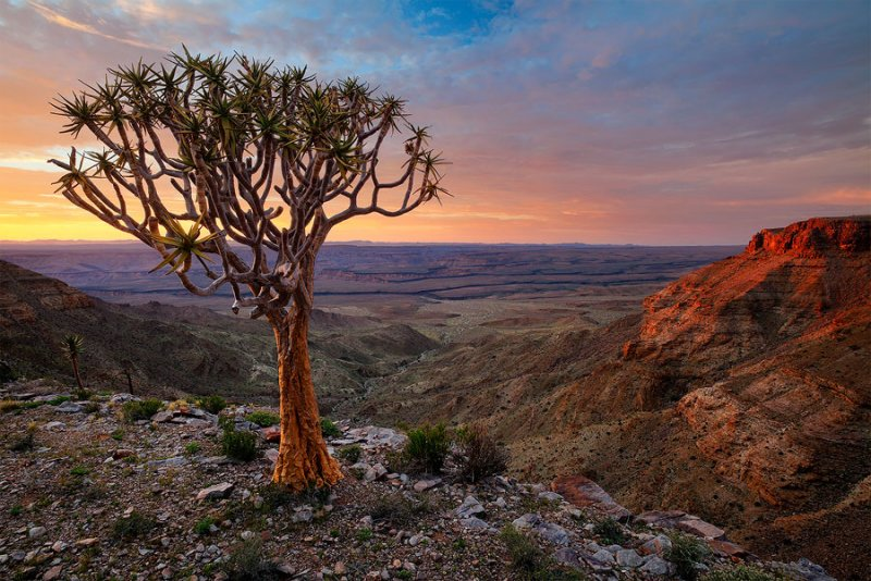 Фантастическая Намибия в объективе Хоугарда Малана - №17