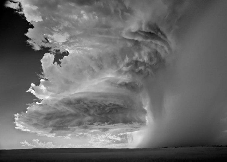Черно-белые бури Митча Добраунера - №2
