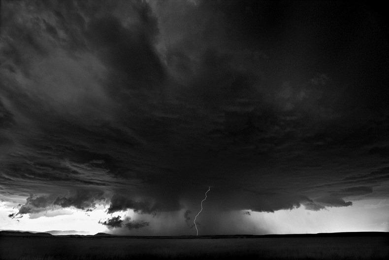 Черно-белые бури Митча Добраунера - №14