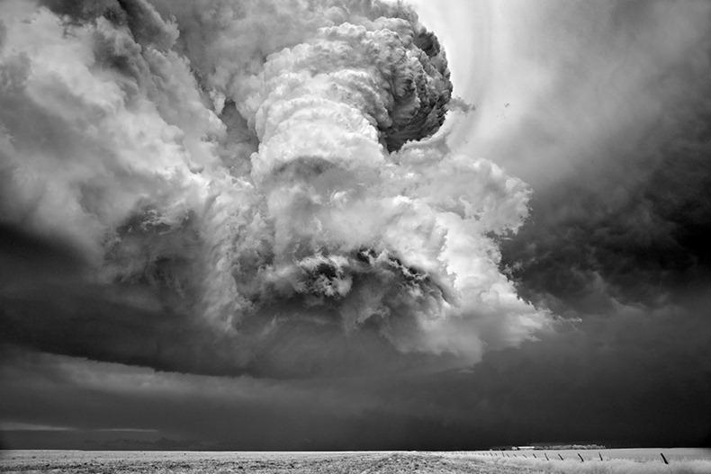 Черно-белые бури Митча Добраунера - №18