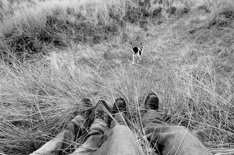 Путешествующие ноги Тома Робинсона - №11