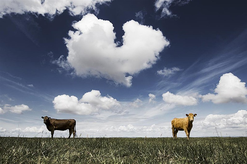 Величественные пейзажи Крейга Истона - №22