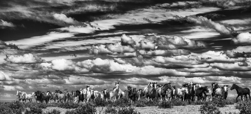 Фотограф Eliseo Miciu - №10