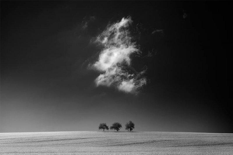 Thomas Finkler - №11