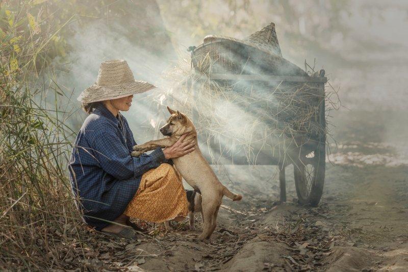 """""""Азия"""" в фотографиях Jakkree Thampitakku - №11"""