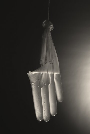 Фотограф Уильям Кастеллана - №6