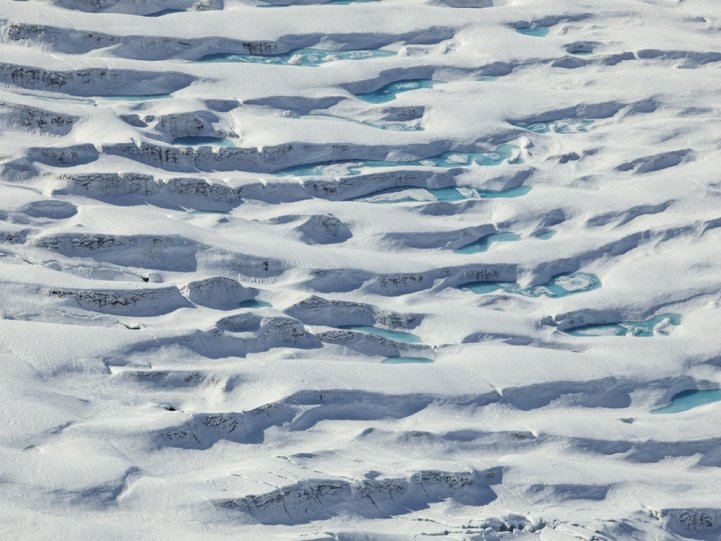 Арктика в фотографиях Дайан Тафт - №11