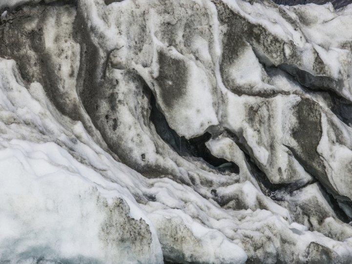 Арктика в фотографиях Дайан Тафт - №20