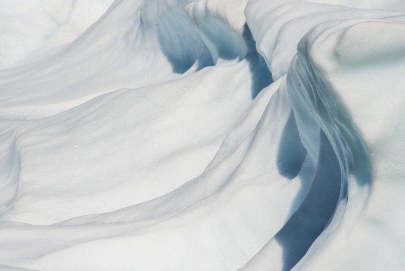 Арктика в фотографиях Дайан Тафт - №19