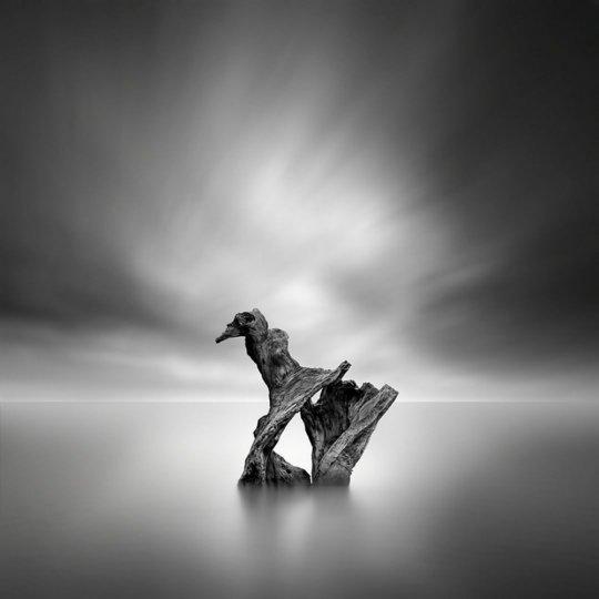 Фотограф Джордж Дигалакис - №4