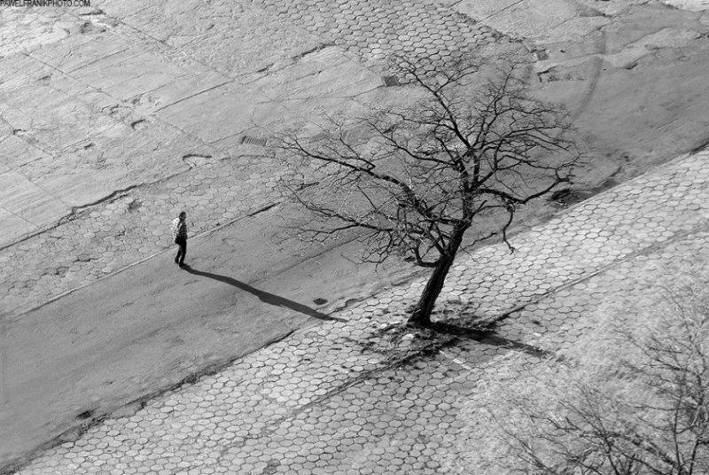 Красота минимализма в фотографиях Павла Франика - №20