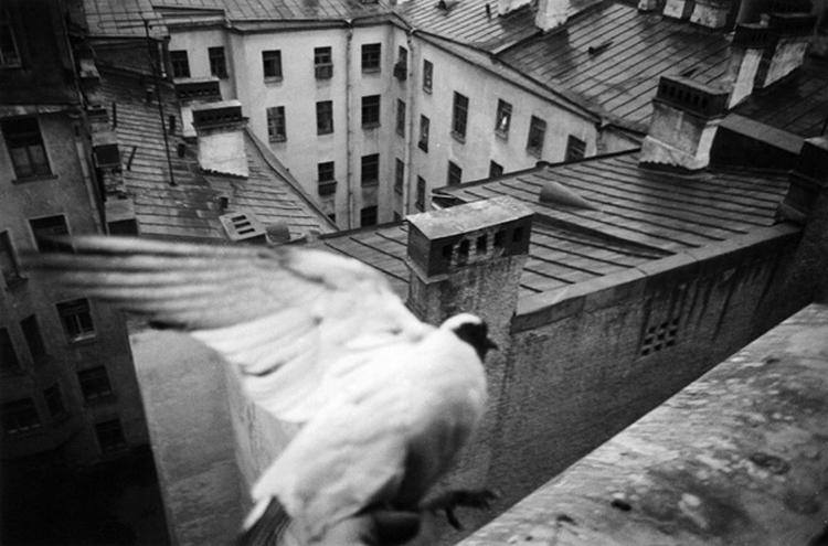 Фотограф Борис Смелов - №8
