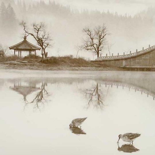 Фотограф Дон Хонг-Оай - №13