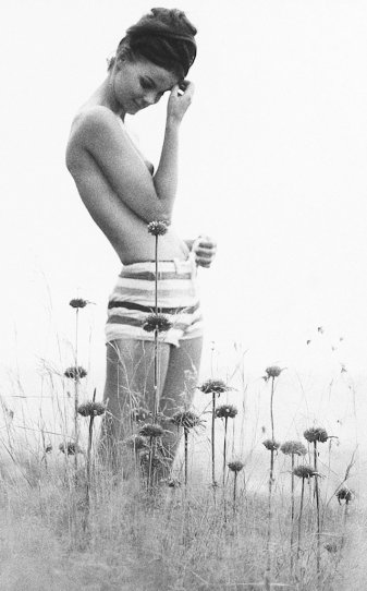 Британский фотограф Сэм Хаскинс - №4