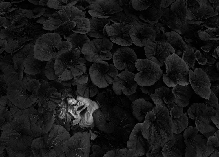«Часть мира». Автор фото: Мариола Глайкар, Польша.