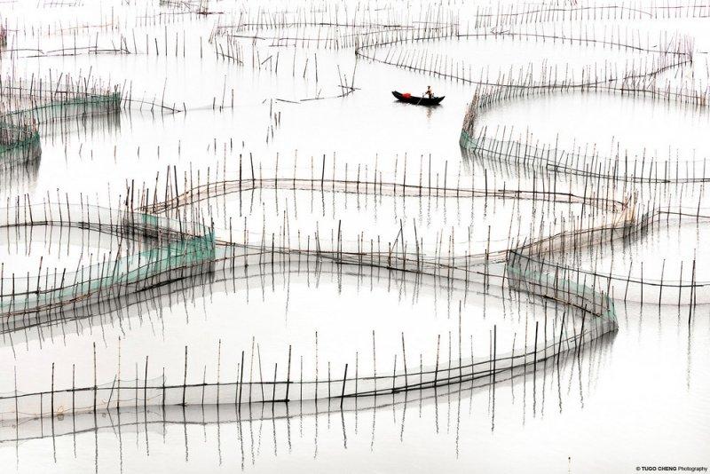 Фотограф Туго Ченг - №11