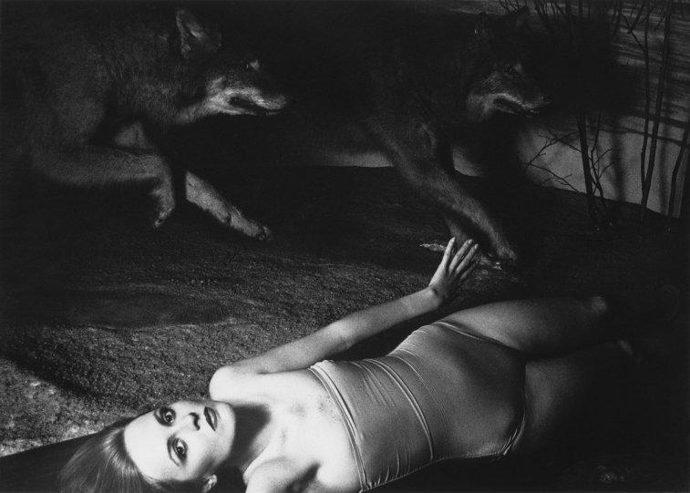 Фотограф Франческа Вудмен - №12