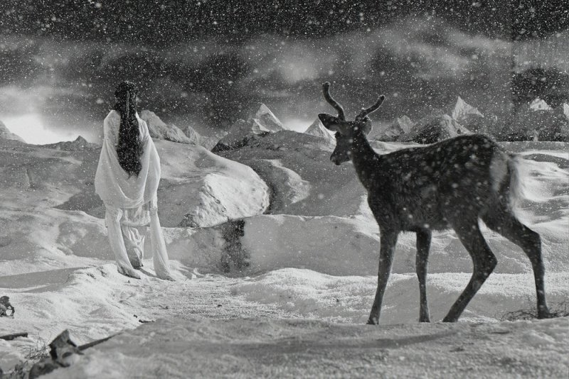 Фотограф Ян Фудун - №9