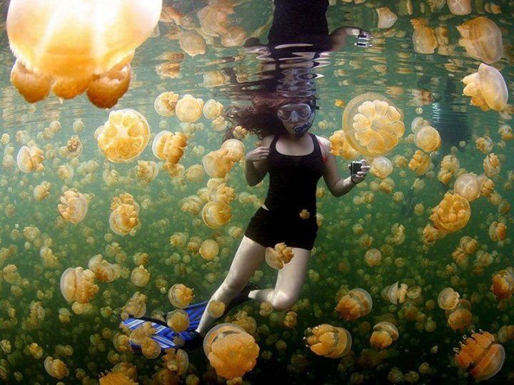 20 самых шедевральных снимков, сделанных для National Geographic - №20