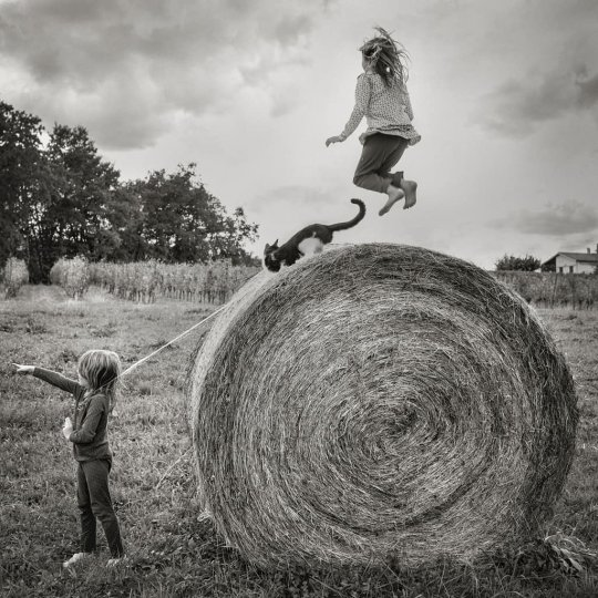 Фотограф Alain Laboile - №1
