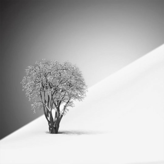 Фотограф Vassilis Tangoulis - №2