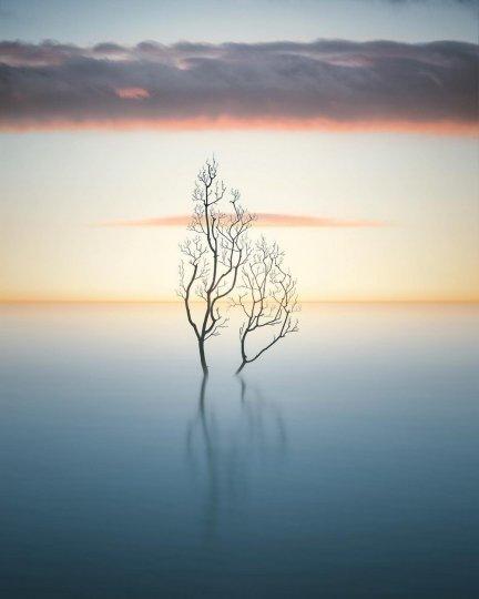 Фотограф Бенджамин Эверетт - №19