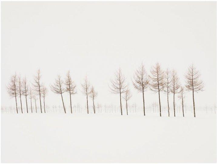 Фотограф Йозеф Хофленер - №8
