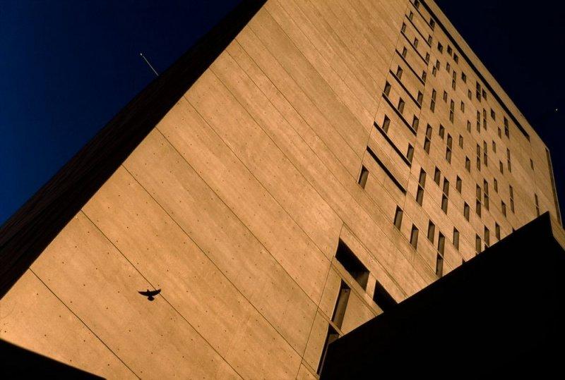Фотограф Стюарт Франклин - №5