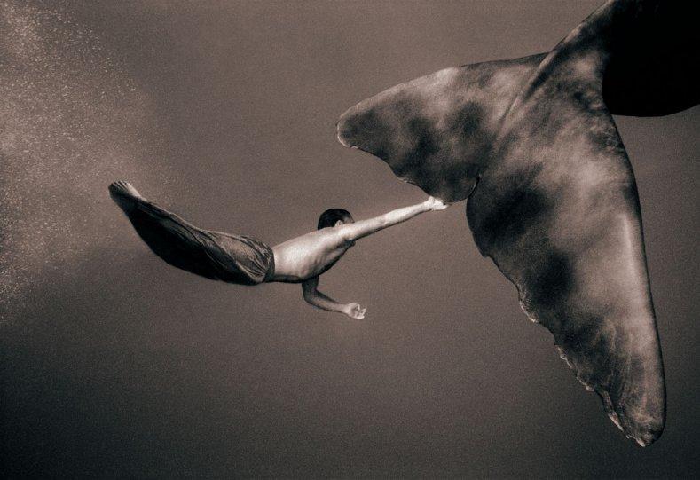 Фотограф Грегори Кольбер - №16