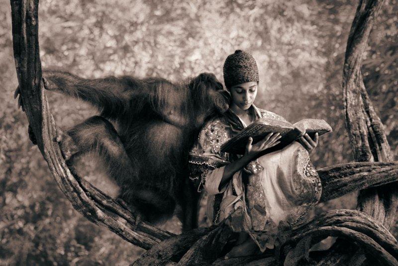 Фотограф Грегори Кольбер - №32