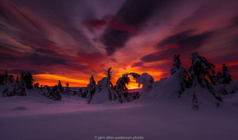 Фотограф Jоrn Allan Pedersen - №6