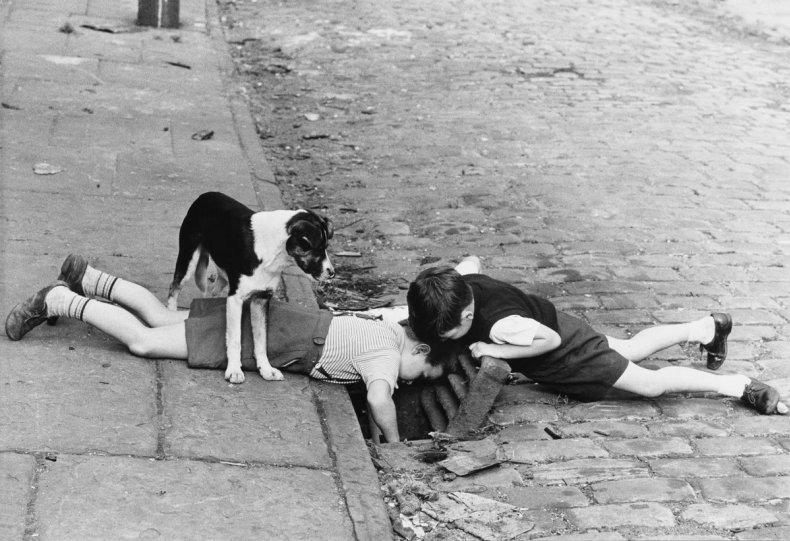 Фотографии Ширли Бейкер 1960-х годов - №8