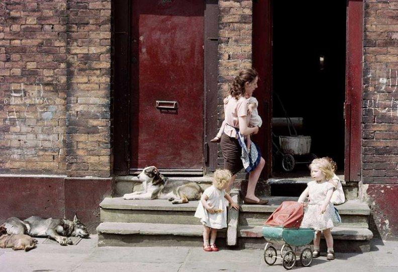 Фотографии Ширли Бейкер 1960-х годов - №16