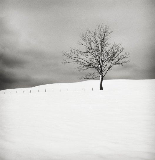 Шведский фотограф Хокан Странд - №12