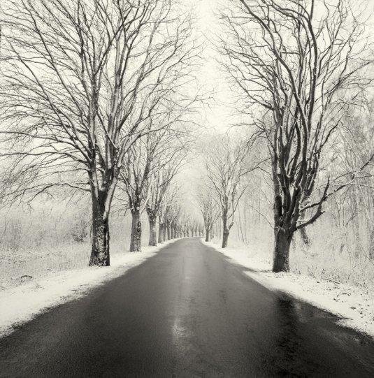 Шведский фотограф Хокан Странд - №20