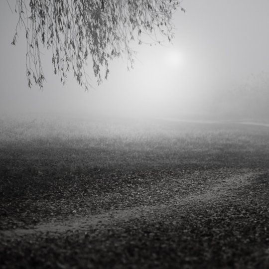 Фотограф Золтан Бекефи - №9