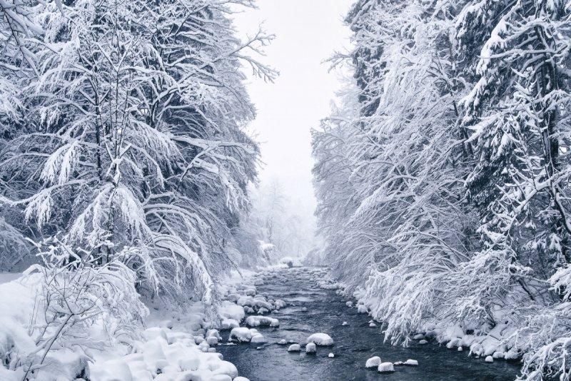 Килиан Шоенбергер «Зимняя сказка» - №5