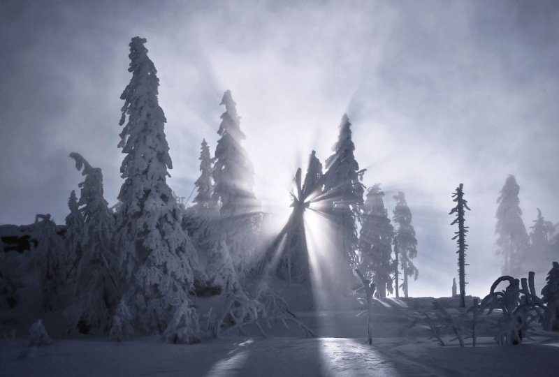 Килиан Шоенбергер «Зимняя сказка» - №3