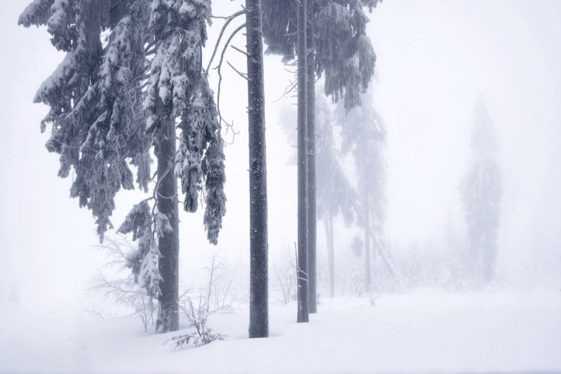 Килиан Шоенбергер «Зимняя сказка» - №14