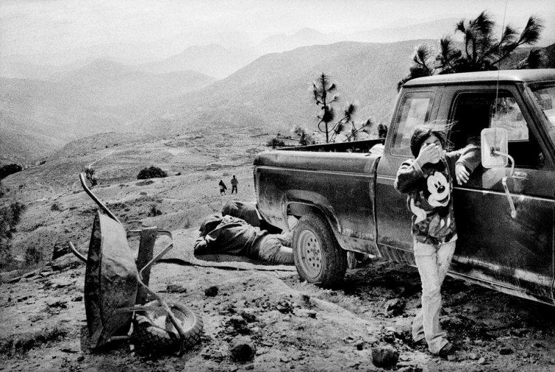 Америка в фотографиях Мэтта Блэка - №15