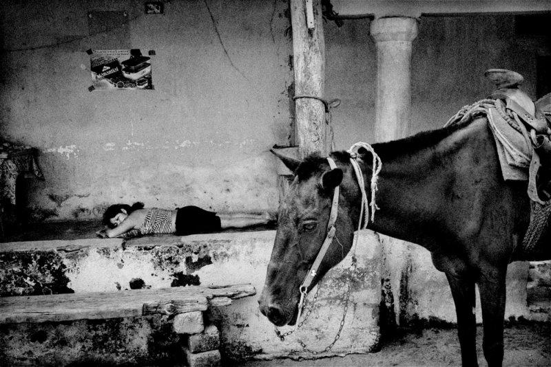 Америка в фотографиях Мэтта Блэка - №18